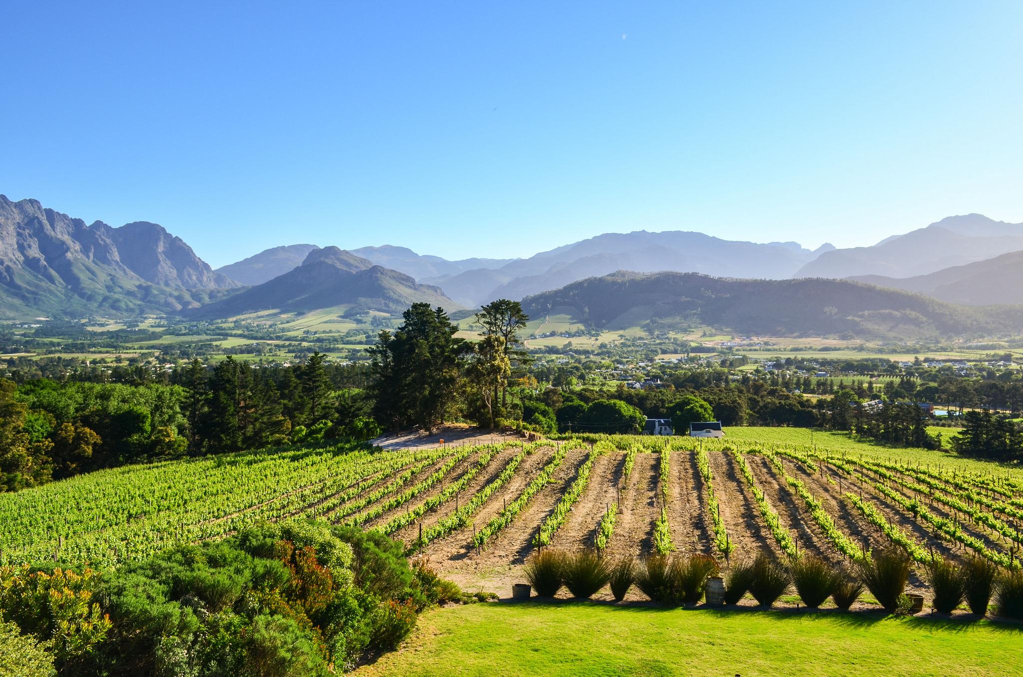 Franschhoek in the Cape Winelands