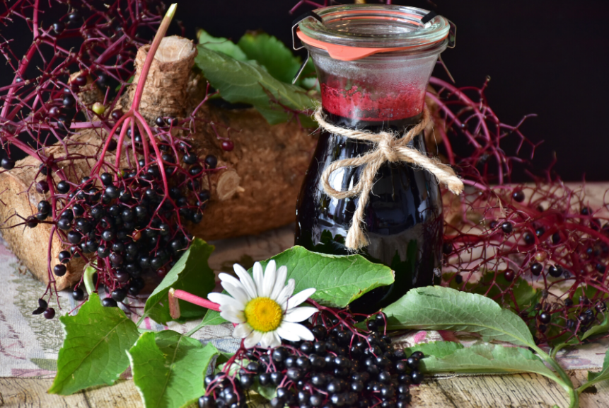 Elderberry: Anti-viral Foods That Boost Your Immune System