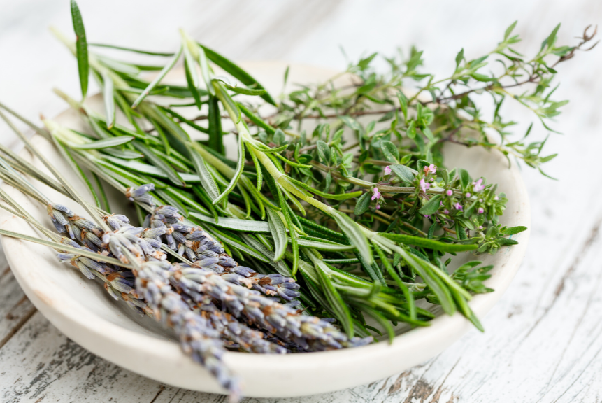 Rosemary: Anti-viral Foods That Boost Your Immune System