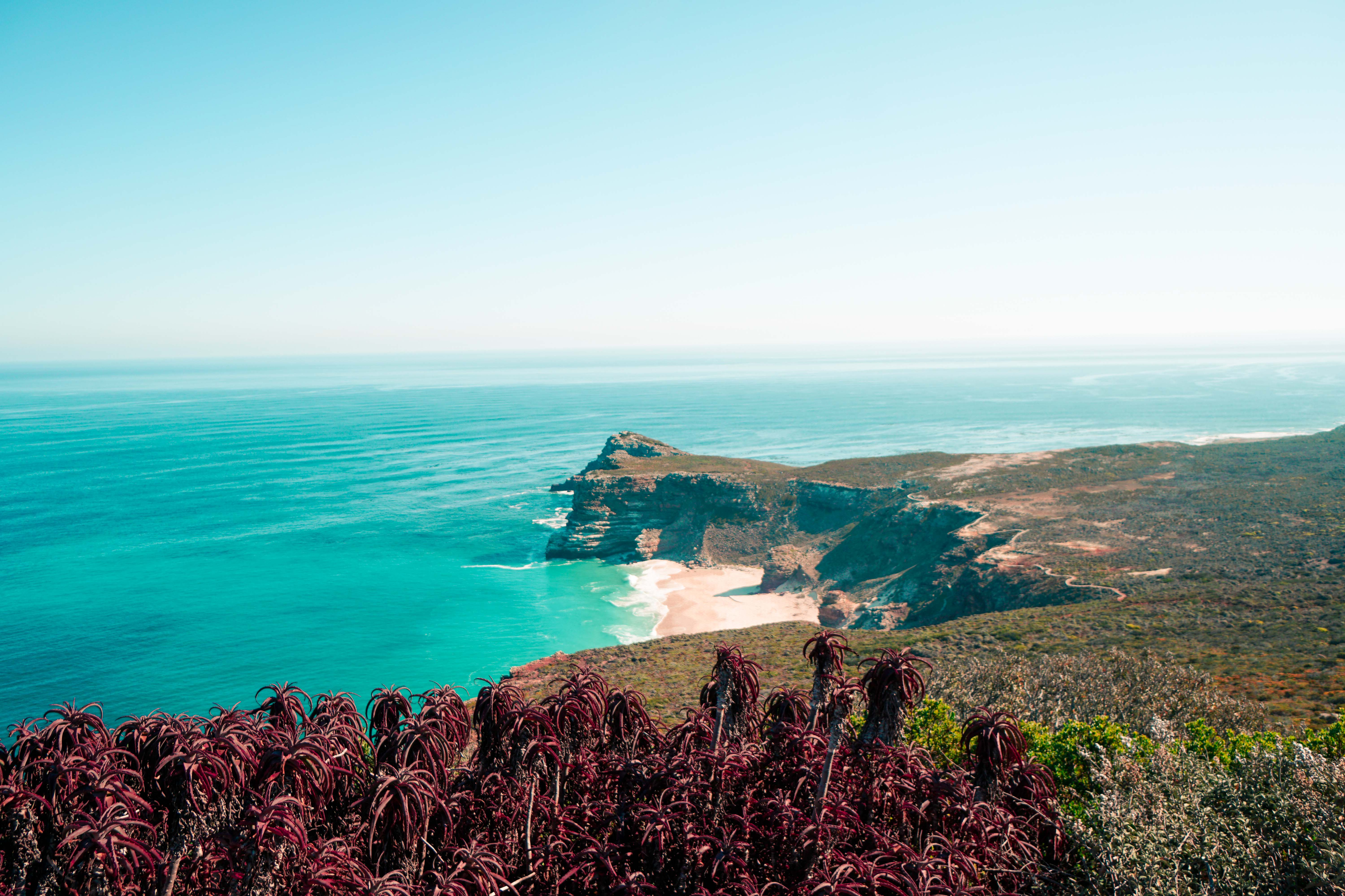 6 Things to do Along South Africa's Cape Peninsula